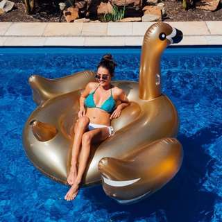 Giant Inflatable Gold Swan Float - Instagram worthy