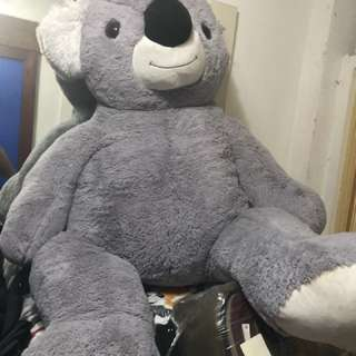 Koala Stuffed Toy  life size