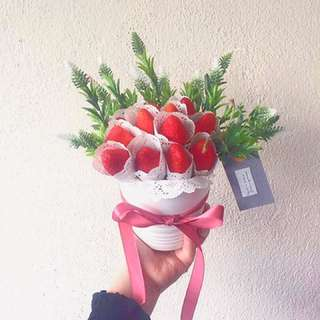Strawberry in the pot
