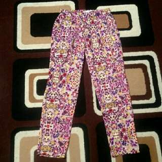 Zara Trafaluc Pants Look Alike