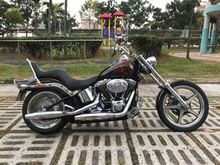 Softail Custom with 666 plate
