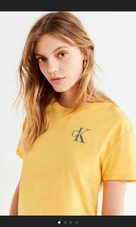 ‼️For Preorder‼️ Calvin Klein Color Pop Tee