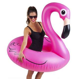 Flamingo Inflatable