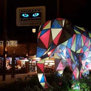 Night Safari Promo +Tram