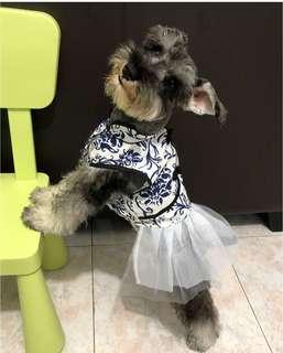Dog - Dress Size:XL