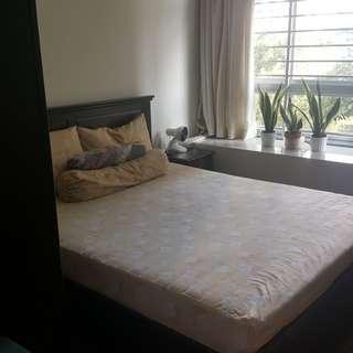 Queenstown room for rent *143062*