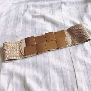 Brown Stretchable Belt with Gold Metal