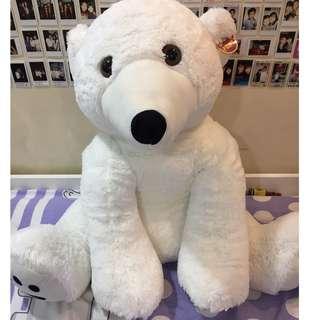 Huge White Polar Bear