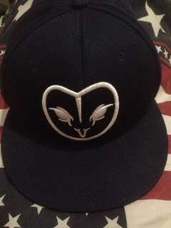 Snapback dream birds