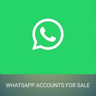 Whatsapp accounts