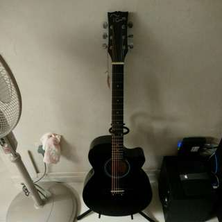 Acoustic TGM Guitar