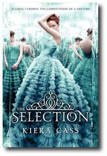The selection novel