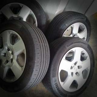 Continental Premium Contact 205/55 R16 Tyres