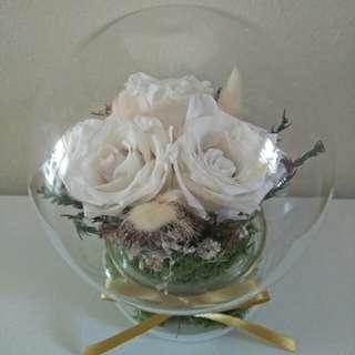 White Eternal Rose in Glass globe