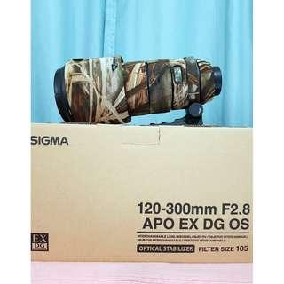 Sigma 120-300mm f/2.8 EX DG HSM Lens (Nikon)