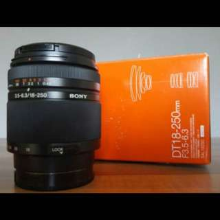 SAL 18-250mm Lens By Sony