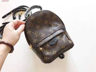 Louis Vuitton palmsprings mini Bagpack