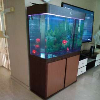 3ft x 2.5ft x 1.5ft Fish Tank with light and external filter