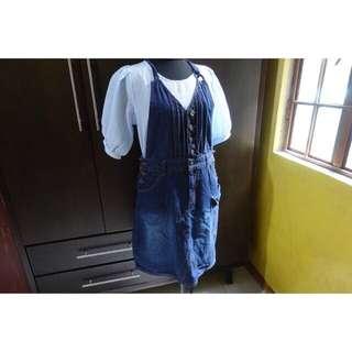 Mulberry Denim Jumper Dress