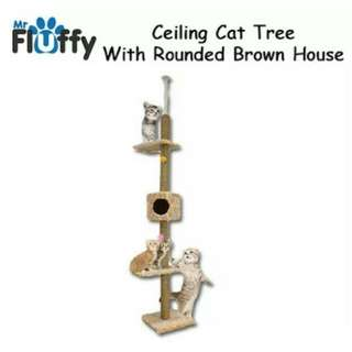 Cat Tree Set