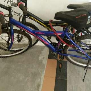 Mertz bicycle rarely used