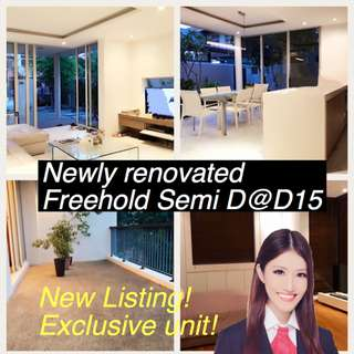 Freehold Semi D@Telok Kurau