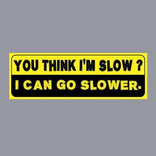 Funny Sticker - YOU THINK I'M SLOW? I CAN GO SLOWER