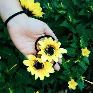 Sunflower Ipit