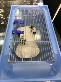 Terrapin/ turtle tank or cage
