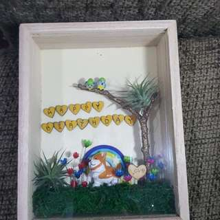 3D Birthday frame with airplant and frozen flowers