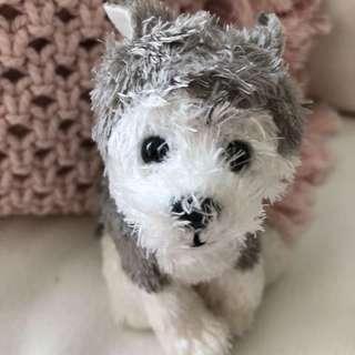TY Inc. Keychain - Slush (The husky dog)