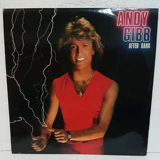 Andy Gibb - After Dark Vinyl Record