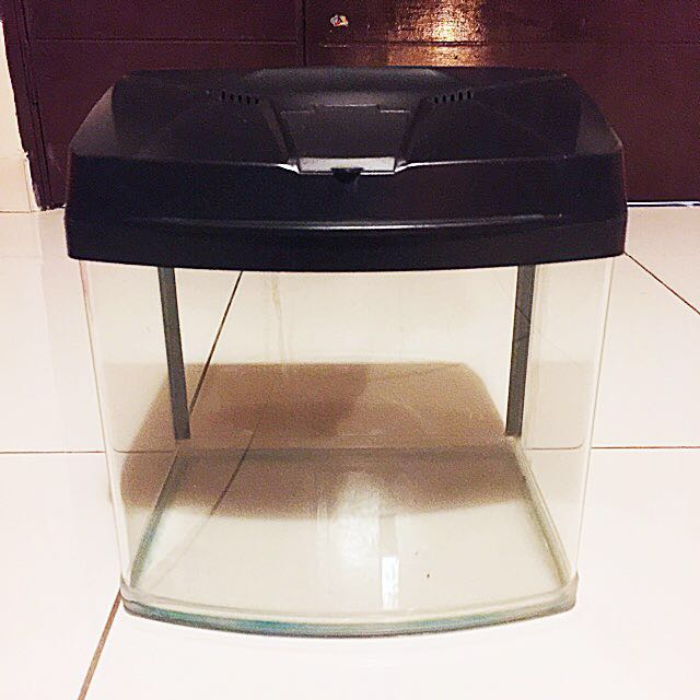 Aquarium / Akuarium / Fish Tank Curve