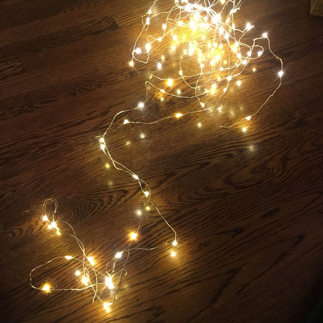 LED wire light warm white
