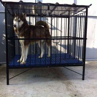 heavy duty dog cage for sale slightly used