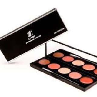 LT PRO LIp Color 02 ,5 shades of Natural Lip Colours Palette with Sunflower oil & Vit E.  Usual Price $20 (5 Days Special!)