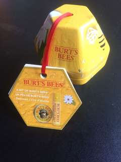 Burt's bees NATURALLY GIFTED set(lip balm+ hand salve)