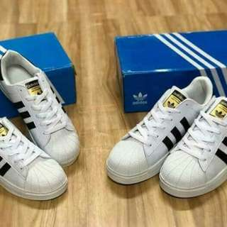 Adidas All Star