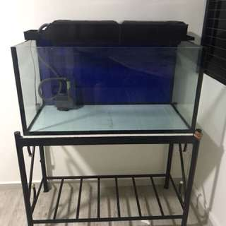 3ft x 1.5ft x 1.5ft tank plus stand and OHF