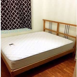 $800 Eunos Condo common room for rent