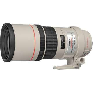 Canon EF 300mm f/4.0 L IS