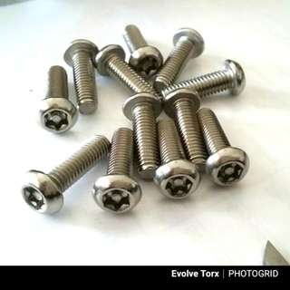 🔩M8 Stainless Steel Torx Bolt