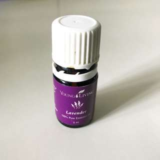 Young Living Essential Oil Lavender 吉樽