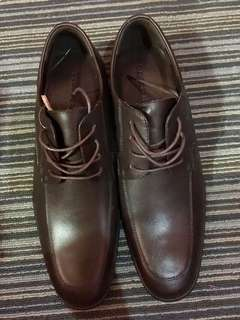 Brand New Salvatore Brown Leather Shoes