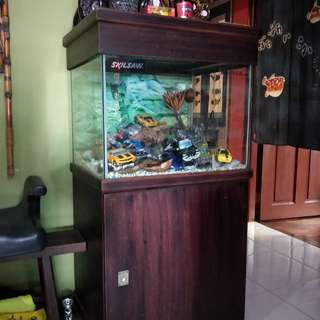 Fish tank with storage cabinet and top cover