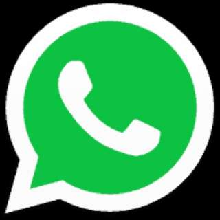 Transfer WhatsApp from iOS to Android