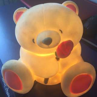 Teddy bear bank with light
