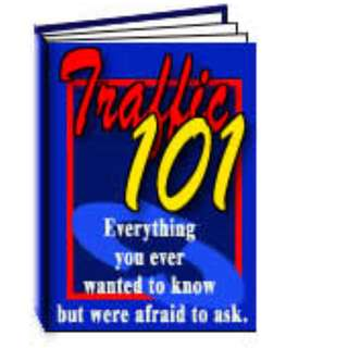 Traffic 101: Everything You Ever Wanted To Know But Were Too Afriad To Ask eBook