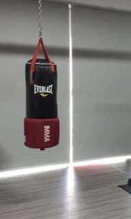 *Almost new* EVERLAST MMA gym equipment / punching bag