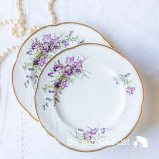 TWO antique purple delphinium English bone china tea plates